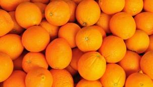 Bagaj ücreti ödememek için 30 kilo portakal yediler